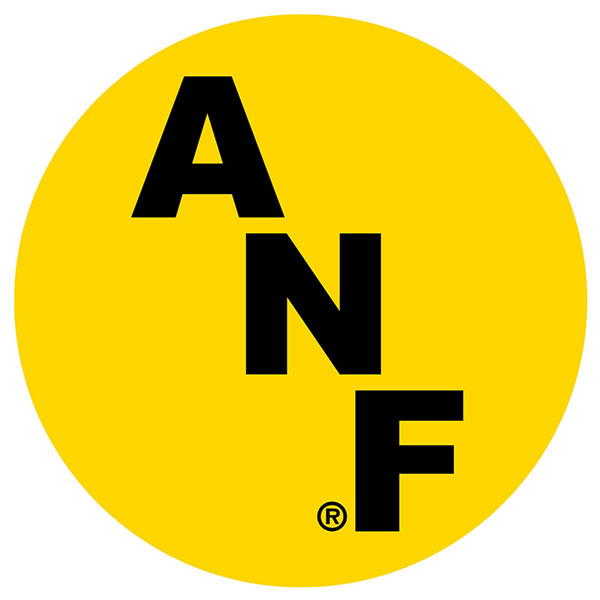 "Iowa Hawkeyes ANF 3"" Decal"