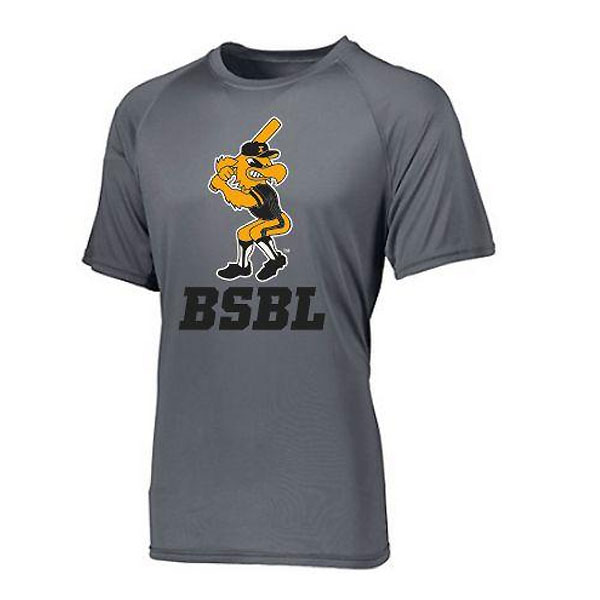 Iowa Hawkeyes Moisture Wick Herky over BSBL (Grey)