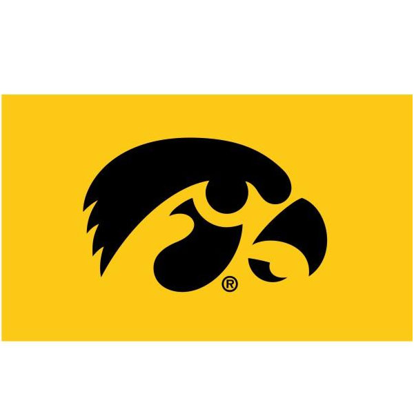 Iowa Hawkeyes Double Sided Flag