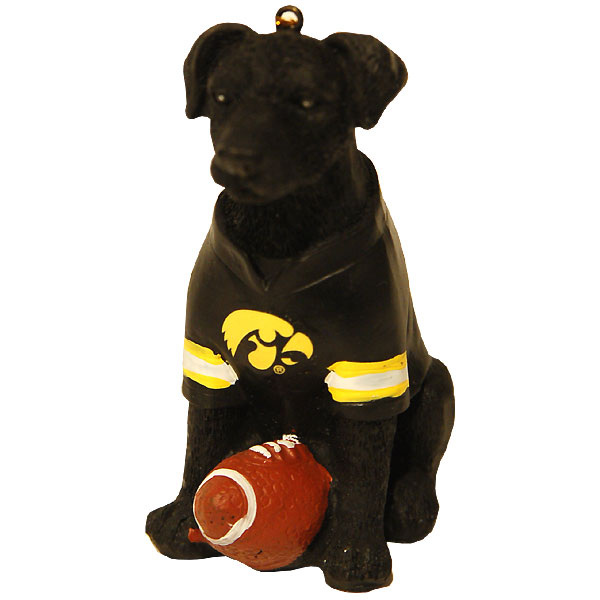 Iowa Hawkeyes Lab Ornament