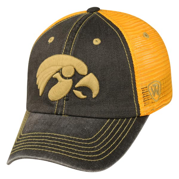 Iowa Hawkeyes Past Adjustable Cap