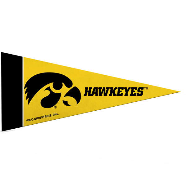Iowa Hawkeyes Mini Pennant