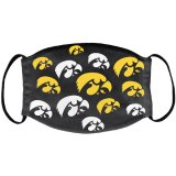 Iowa Hawkeyes Hard Work Design Mask