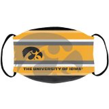 Iowa Hawkeyes Resignation Design Mask
