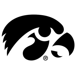 Iowa Hawkeyes Tiger Hawk Decal