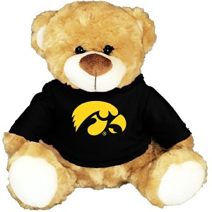 Iowa Hawkeyes Hooded Bear Stuffed Animal