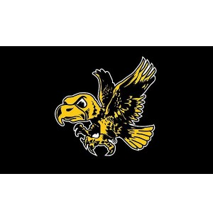Iowa Hawkeyes Double Sided Flying Herky Flag