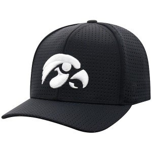 Iowa Hawkeyes Night Mesh Hat