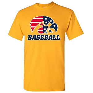 Iowa Hawkeyes Baseball Patriotic Tee
