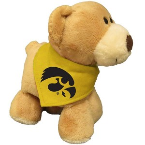 Iowa Hawkeyes Bear Stuffed Animal