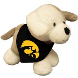 Iowa Hawkeyes Puppy Stuffed Animal