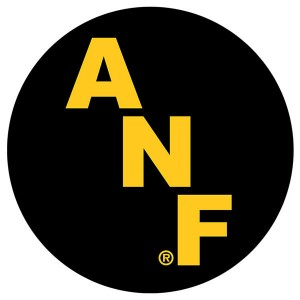 "Iowa Hawkeyes ANF 2"" Decal - Set of 2"