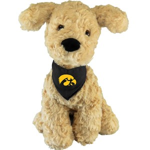 Iowa Hawkeyes Retriever Stuffed Animal